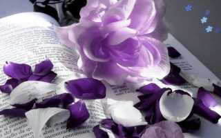 Фиолетовый маникюр — все о цвете, идеи дизайна