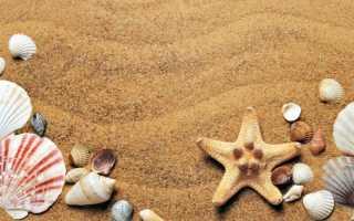 Педикюр для отдыха на море — идеи и примеры