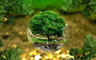 Зеленый и его тона в маникюре — идеи применения