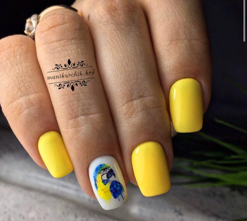 Желтый маникюр с попугайчиком на квадратных ногтях