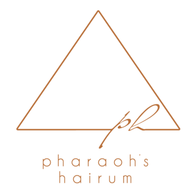 логотип студии красоты