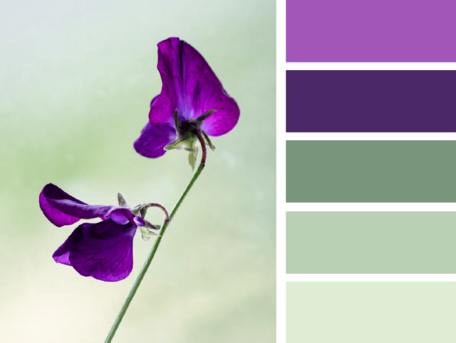 Как сочетать фиолетовый маникюр с одеждой