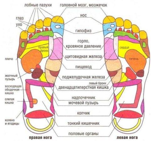 Рефлекторные зоны на стопах ног