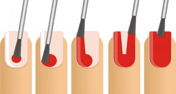 Зоны ногтевой пластины и как наносить краску